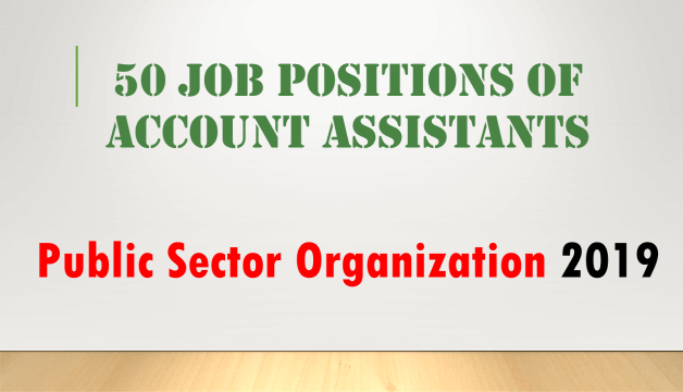 Positions of Account Assistants In Public Sector Organization