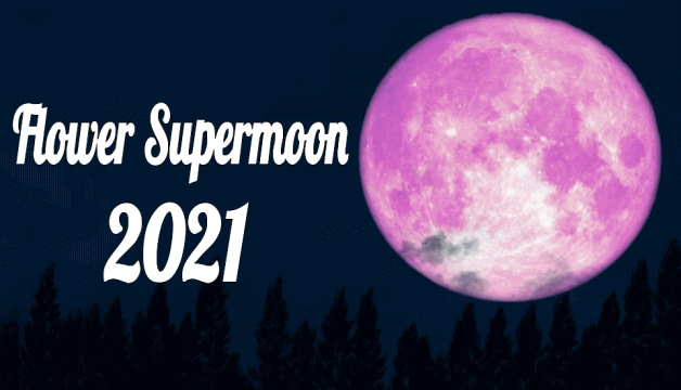 Full Chandra Grahan 2021 Today | Lunar Eclipse and Red Blood Supermoon will Be Lighting Up